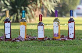 Una investigación impulsa el resurgimiento histórico de un vino