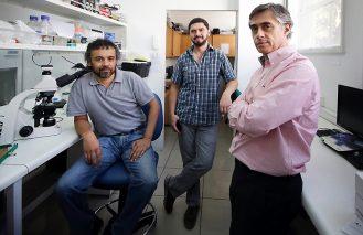 Investigadores de la U. de Chile desarrollan tecnología de alta eficacia para el tratamiento de la esclerosis múltiple