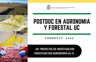 Posición Postdoctoral en Agroforestal UC a través de Fondecyt 2022